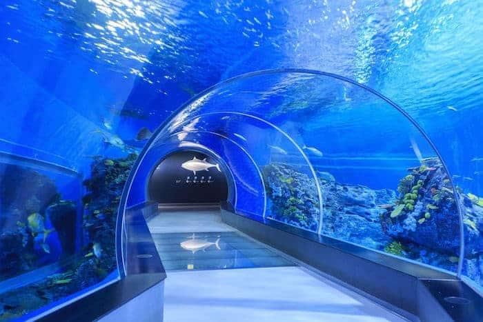 Tunnel Acquario di Copenaghen